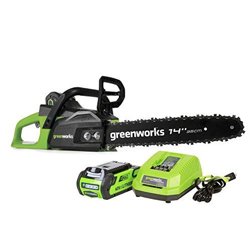 Greenworks CS40L210 Chainsaw, 14' (Old)