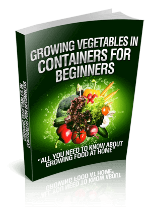 Growing_Vegetables_In_Containers